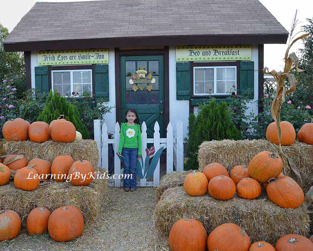 PumpkinPatchIrishBedAndBreakfastPhoto---LearningByKids