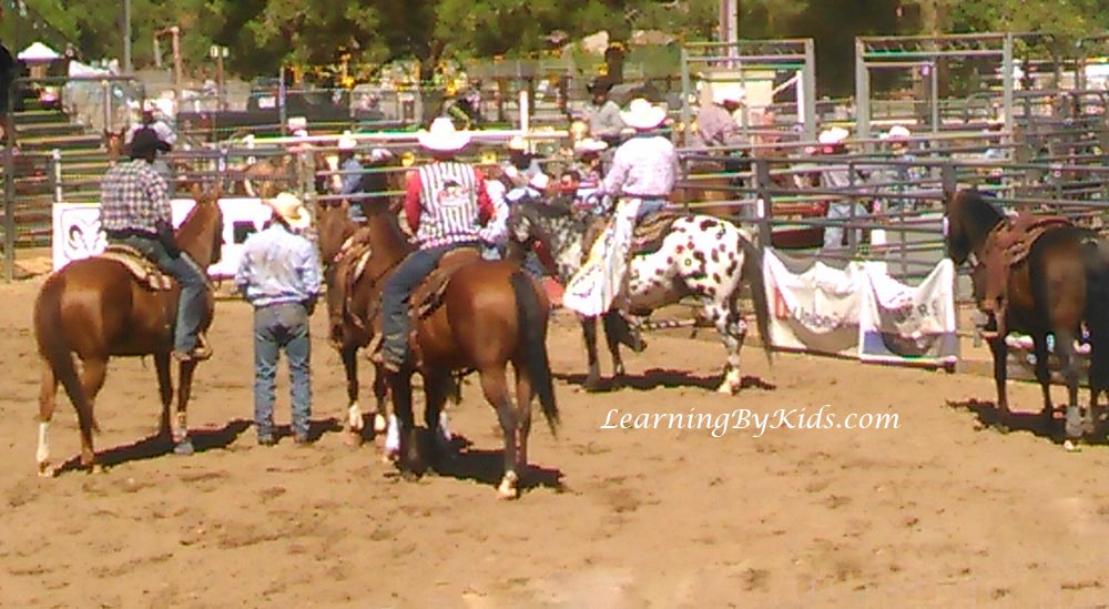 Poway Rodeo Horses | Learning By Kids | LearningByKids.com